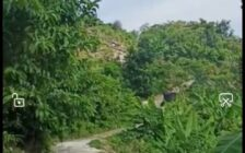 Agriculture Land For Sale at Teluk Kumbar